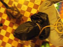 DSC05433 (la cara que rie) Tags: argentina de la el x cruz ahorcado indigena arteurbano guerrillaart scda bche streetartargentina guerrilladesign