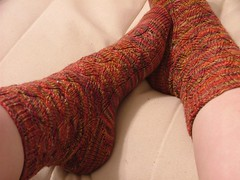 Waving Lace Socks (dccraftaholic128) Tags: dc koigu kpppm dupontcircle interweaveknits interweave yarnshop evelynaclark wavinglacesocks 25favoritesocks loopedyarns