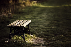 Come Sit In Natures Spotlight (Dkillock) Tags: sunset sunlight david 35mm canon bench prime evening ray open bokeh dusk mark magic wide spotlight full beam ii frame 5d desaturated f2 usm fullframe ef mk shaft newriver 135mm mkii markii wideopen llens canonef135mmf2lusm killock 5dmarkii 5d2 5dmkii magicprime dkillock davidkillockphotography
