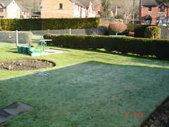 Low Maintenance Garden Before