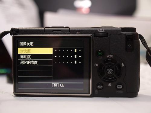 P1289578.JPG