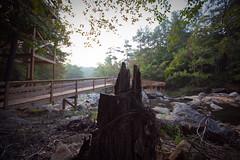snake creek (eschipul) Tags: travel green fall water creek river georgia exposure hiking bignerdranch earlymorninglight snakecreek thebeginningoffall banningmills banningmillsgeorgia milslodge