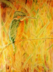 kingfisher (greatartist) Tags: green bird art beautiful beauty leaves pencil pencils wonder nice interesting textures kingfisher expressive colored serene neat lovely coloured plain pleasant folliage muted subtle tactile satisfying pencil coloured colored