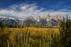 IMG_5640-Edit-J Prince.jpg (princer7) Tags: park searchthebest grand landing national lower teton grandtetonnationalpark schwabacher jacksonholewyoming dcptsept2010