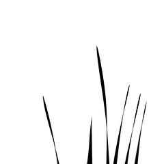Haiku (.I Travel East.) Tags: life light blackandwhite bw usa white black reed monochrome reeds nikon louisiana poetry haiku minimal lakeshoredrive east lsu batonrouge nikkor f28 lucio 70200mm deepsouth minimalsim batonrougelouisiana lsulakes itravel d700 resipsaloquitur nikkor70200mmf28 nikond700 itraveleast