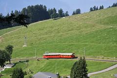 Trenini e bovini.............. (Maurizio Zanella) Tags: mountains cows meadows trains svizzera railways lucerna monti mucche treni rigi ferrovie prati vrb kaltbad rigibahn vitzanau bhe241