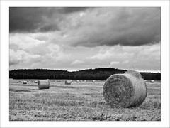 Silage in mono (dubbelt_halvslag) Tags: light summer sky blackandwhite bw cloud white black nature monochrome field weather clouds canon landscape raw sweden schweden himmel calm sverige hay scandinavia bale silage bal bohusln strawbale moln ljus vstkusten strmstad svartvitt strohballen g10 ensilage nsinge