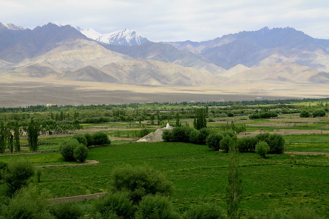 View from Thiksey Gompa