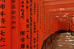 Sacred torii path (Florent Chevalier) Tags: japan kyoto shrine asia inari path  asie japo torii japon giappone japani fushimi jepang sanctuaire  japonia  japonya inaritaisha bn  nht jaapan japonska japonsko   japonija  japna