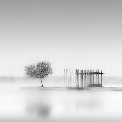 Morning Mist (MaggyMorrissey) Tags: lake france reflection tree jetty allphotosxpress soustonslake