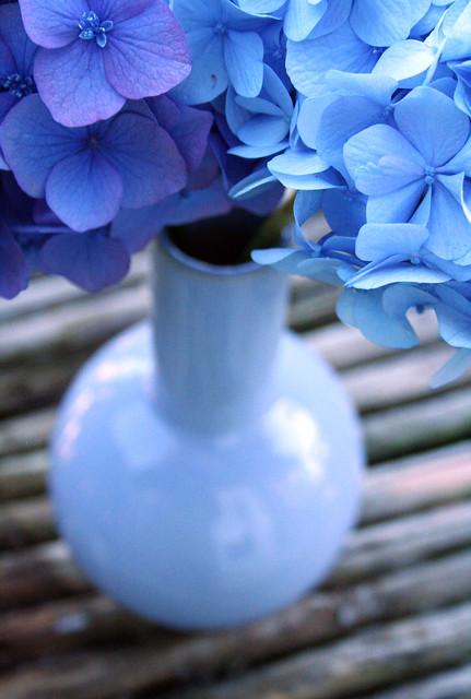 blue vase matches flower