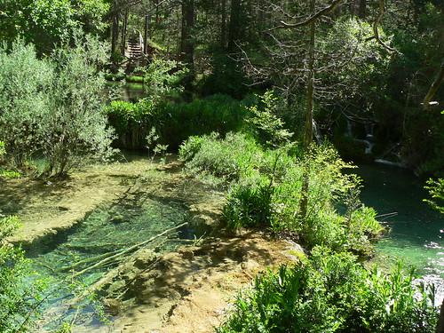 Serranía de Cuenca y nacimiento del río Cuervo 5047587498_a69730f1a6