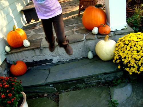 fall jump
