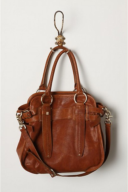 Sepia saddlebag