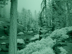 Yosemite in infrared