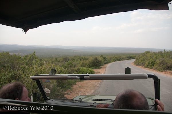 RYALE_SA_National_Park_Addo_109