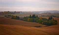 Oktober i Gjerdrum #1 (Krogen) Tags: autumn oktober nature norway landscape norge natur norwegen olympus scandinavia akershus høst romerike krogen landskap noreg skandinavia gjerdrum