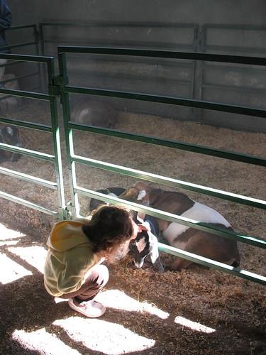 Girl + goats