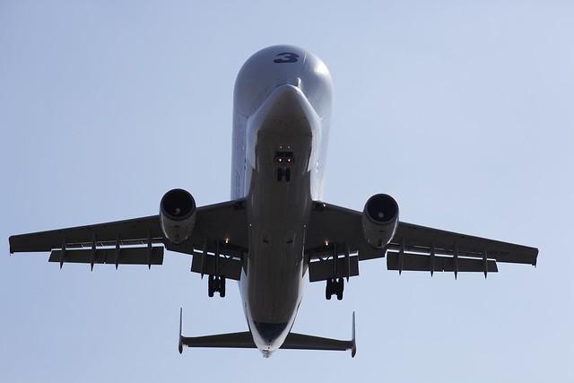 Airbus Beluga 3 - _MG_2590
