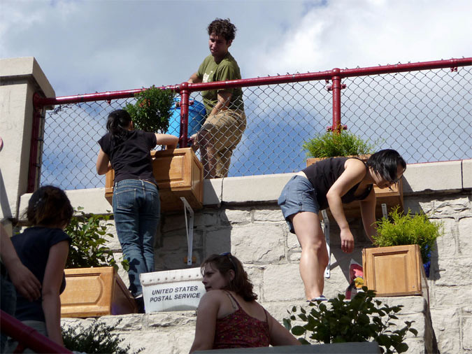 Installing plants at the ARTfarm in the Bronx (Courtesy AFHny Studio)