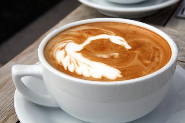 swan latte