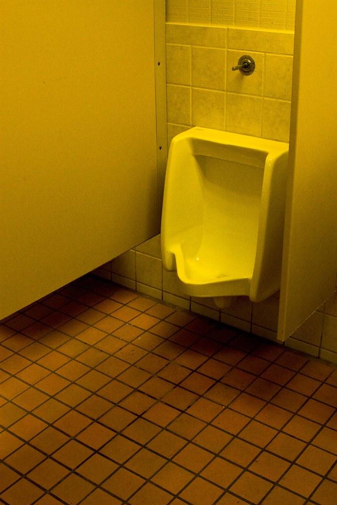 Bathroom loo pee pee peeing shitter toilet opinion