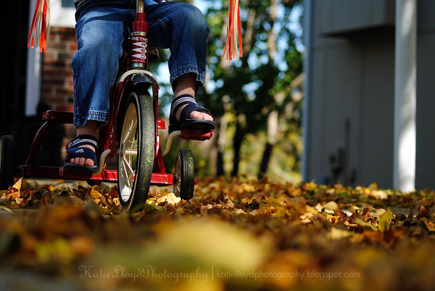 Riding Through Leaves