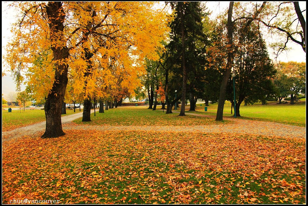 Riverside Park, Kamloops 3