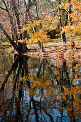 Reflections on the Canal (Bruce Livingston) Tags: autumn fall reflections canal newjersey ruins nj morriscanal musky mrw sussexcounty musconetcong waterloovillage