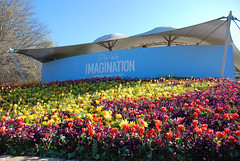 Floriade - Imagination, Canberra. (i.am.a.procrastinator.) Tags: flowers flower colour sign australia imagination canberra colourful act floriade australiancapitalterritory