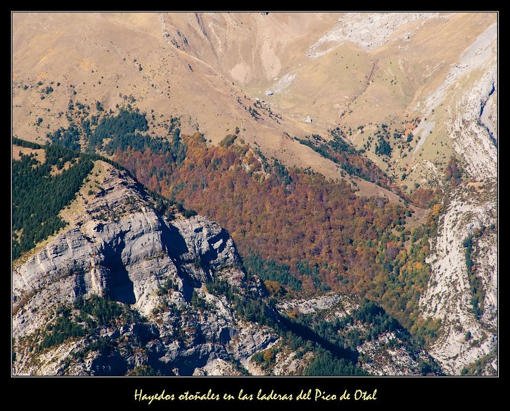 Hayedos otoñales en las laderas del Pico de Otal