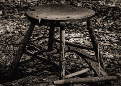 Have a Seat... (JoeMorrisAL) Tags: bw fall leaves georgia chair westville canon50d pse8
