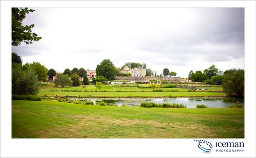 Château Mouton-Rothschild 2010 113
