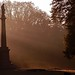 Cincinnati - Spring Grove Cemetery & Arboretum Morning Light & Mist