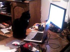 Edward pracuje