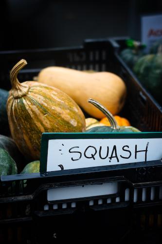 squash 5 (1 of 1)