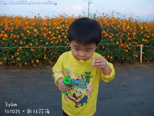 DSCF1973花