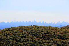 NYC Skyline (smj587) Tags: city nyc autumn newyork fall nature skyline sigma sigma50500