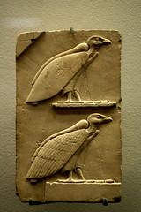 """Le signe qui se lit """"mout"""" : le vautour"""