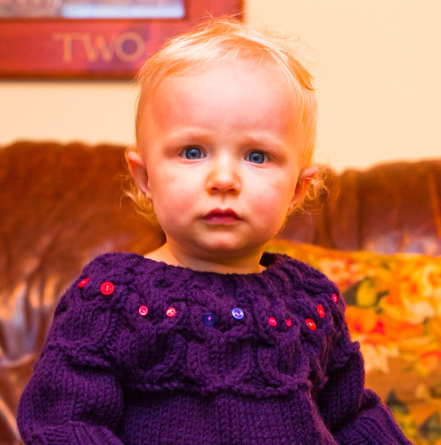 Owlet Pullover