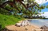Waipouli Beach, Kauai (inarena) Tags: kauai kauaibeach waipoulibeach
