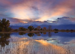 Sweet Stillness (DM Weber) Tags: california autumn sunset reflection fall canon dusk bishop lastlight cottonwoods eos5dmarkii farmerspond psa148 dmweber