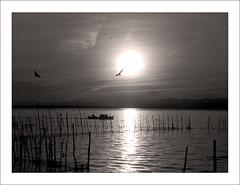 VALENCIA (NUR FS) Tags: valencia barca bn silueta albufera cruzadas