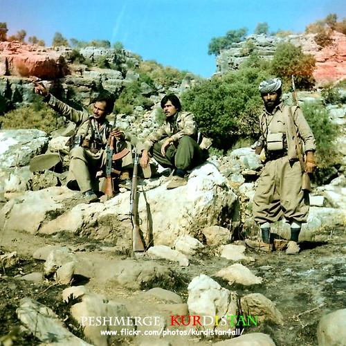 peshmarga kurd kurdistan