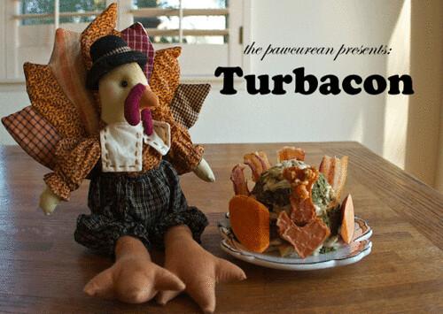 Turbacon 3