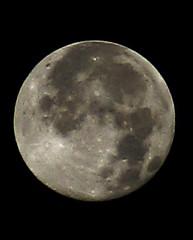 Blue Moon, Oakland, California, 11/21/2010 (swedg) Tags: moon fullmoon moonshot bluemoon 11211010