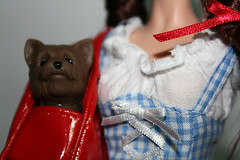 dorothy gale 11