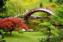 landscape-design-plans-Kuwait-Garden- (genious Junaid) Tags: nature flickr dragon double estrellas awards watcher shiningstar ringexcellence wwwflickrcomgroupsmywinnersdiscuss72157 landscapedesignplansjapanesegarden 624233451474
