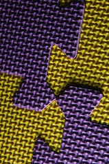 Purple and Yellow (Funnin) Tags: macro texture nikon d2x sparkle ispysweepwinner