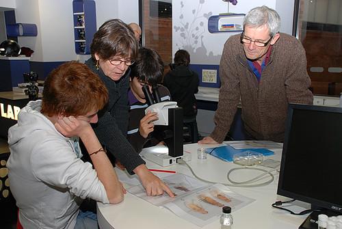 La Recherche, l'Education et le Muséum
